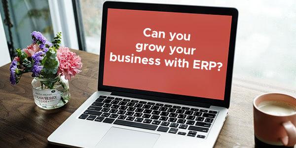 ERP business